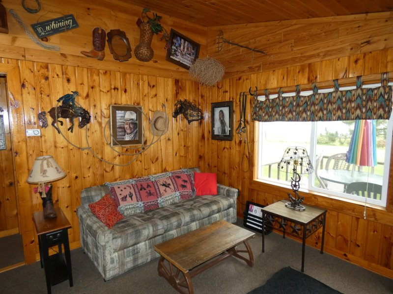 Cabin2_Livingroom