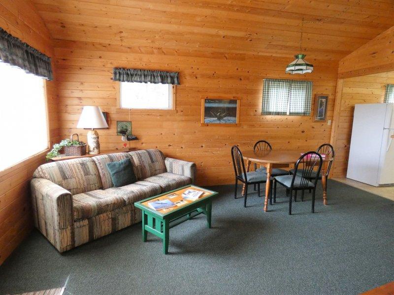 Cabin3_Livingroom1
